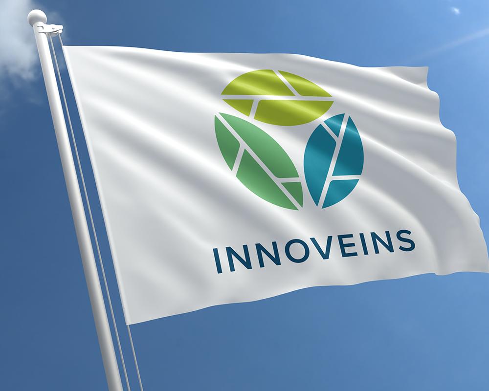 Branding Innoveins